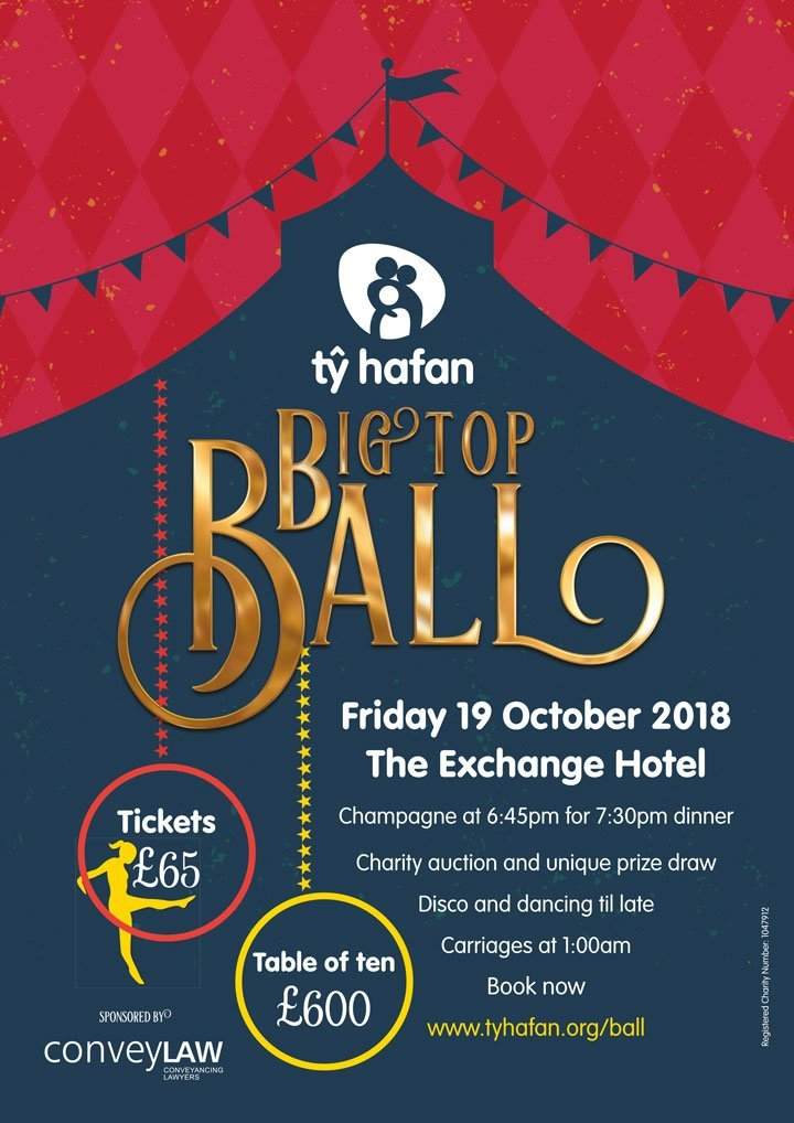 ty hafan big top ball